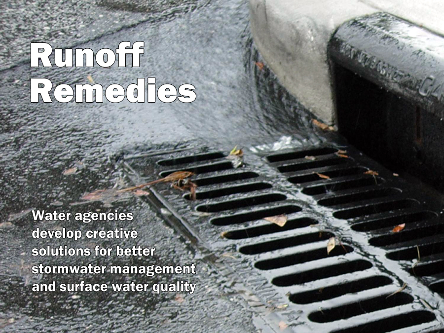 Runoff Remedies