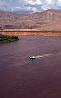 A boat passes silt banks towering more than 50 feet above the banks of the Colorado River near Pearce Ferry. DAVID WALLACE